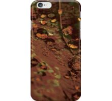 Lucid Nature Collection 4/10 iPhone Case/Skin