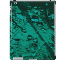 Lucid Nature Collection 6/10 iPad Case/Skin