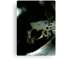 Lucid Nature Collection 8/10 Canvas Print