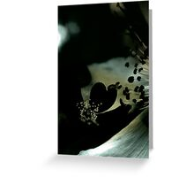 Lucid Nature Collection 8/10 Greeting Card