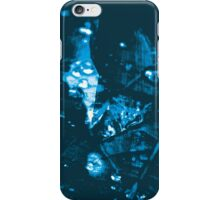 Lucid Nature Collection 9/10 iPhone Case/Skin