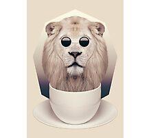 Caffeinimals: Lion Photographic Print
