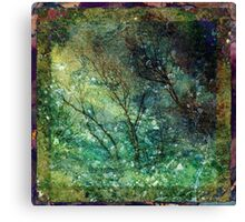 The Shuddering Wood Canvas Print