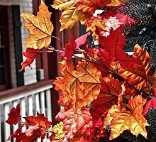 Fall Leaves by Stephen Burke