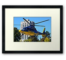 Survival Flight Framed Print