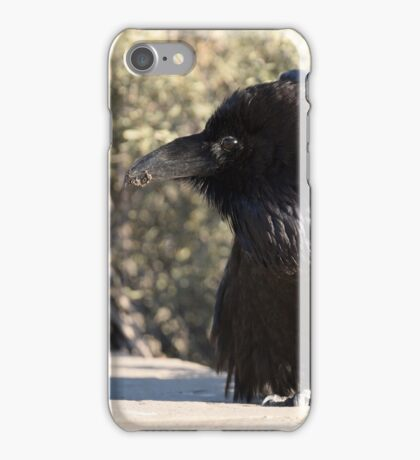 Crystal Raven's Fluff iPhone Case/Skin