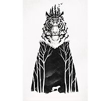 The Siberian King Photographic Print