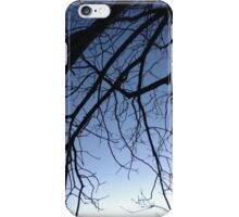 Through the Willow iPhone Case/Skin
