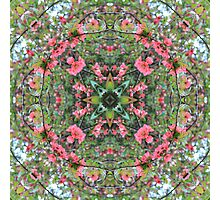 Nature Mandala VIII Photographic Print