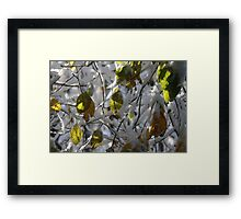 Southborough Early Storm 2011 Framed Print