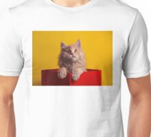 The Cat in the Red Box Unisex T-Shirt