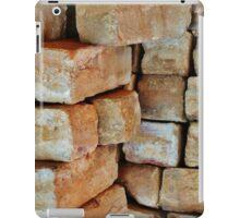 Don't build walls, build bridges iPad Case/Skin