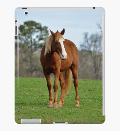 A horse is a horse, of course iPad Case/Skin