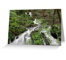 Wet Weather Cascades II Greeting Card