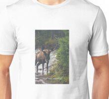 HOW VERY AMOOSING | ANIMAL PUNS BY BADPUNCO Unisex T-Shirt