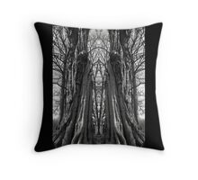 The Wisdom Gateway Throw Pillow