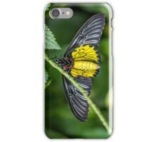 Golden Birdwing iPhone Case/Skin