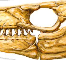Mosasaur Skull Sticker