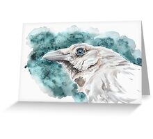 White raven Greeting Card