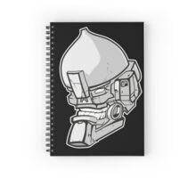 Stone Spiral Notebook