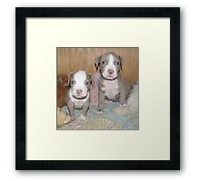 Together Again - A Story Of Survival Framed Print