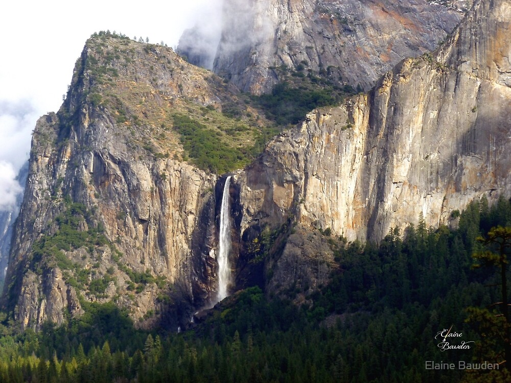 A moment of sun on a rainy day in Yosemite by Elaine Bawden
