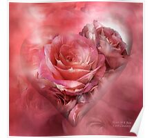 Heart Of A Rose - Melon Peach Poster