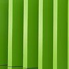 Green Stripes by Joan Wild
