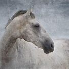 Grey Horse At The Beach Textured by Michelle Wrighton