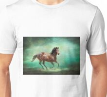 Music To My Ears - Horse Art Unisex T-Shirt
