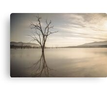 Lake of trees Canvas Print