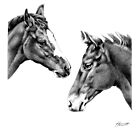 Foal Friends by Patricia Howitt