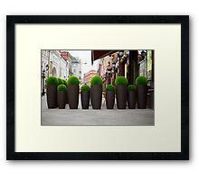 Street flowers near cafe Framed Print