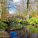 Ness Woods Bridge by Ciaran Sidwell