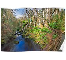 Ness Woods River Poster