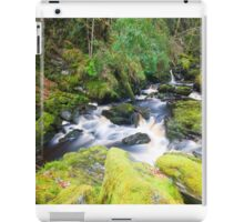 The River Ness iPad Case/Skin