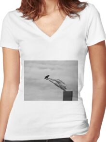 The Art Critic Women's Fitted V-Neck T-Shirt