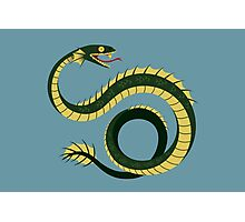 Sea Serpent Photographic Print