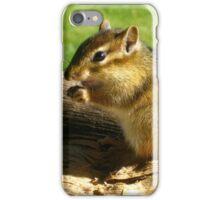Chipmunk Case iPhone Case/Skin