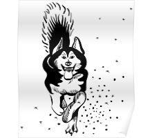 sled dog Alaskan malamute running Poster
