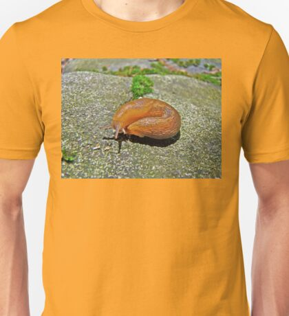 Working On My Tan - Arion subfuscus Slug Unisex T-Shirt