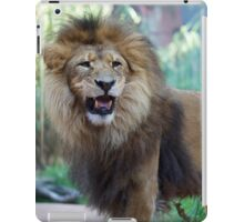 Australia - Sydney - Taronga Zoo - Lion iPad Case/Skin