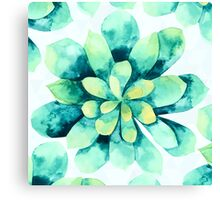 tropical flower  Canvas Print