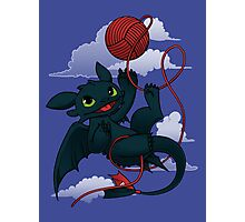 Dragons just wanna get fun - day version Photographic Print