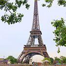 Eiffel Tower and Seine River by cinn