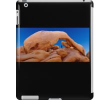 Arch Rock iPad Case/Skin