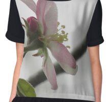 Apple Tree Blossom Chiffon Top