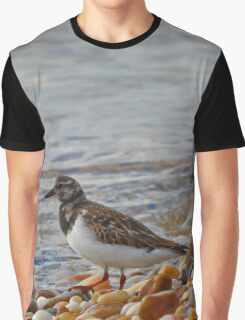 Arenaria Interpres - Ruddy Turnstone | Long Beach Point, New York Graphic T-Shirt