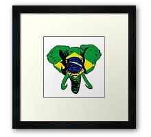 Elephant Brazil Framed Print