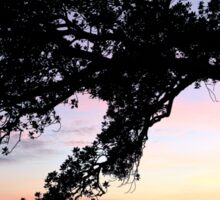 Fig Tree Silhouette Sticker